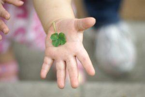 子供の手とクローバー